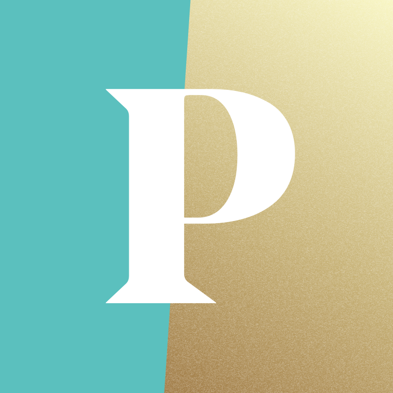 General Terms of Service & User Agreement | Paladin